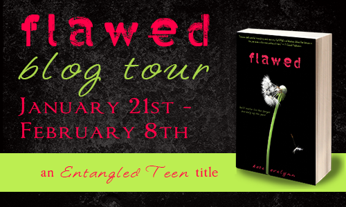 Flawed blog tour button